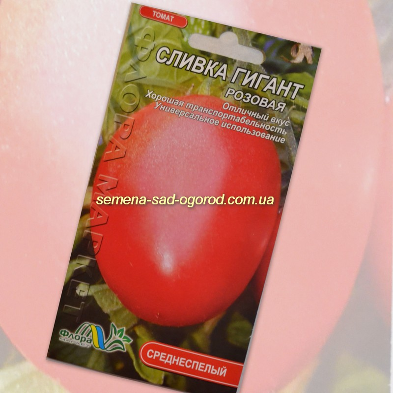 низкорослые помидоры сливки фото